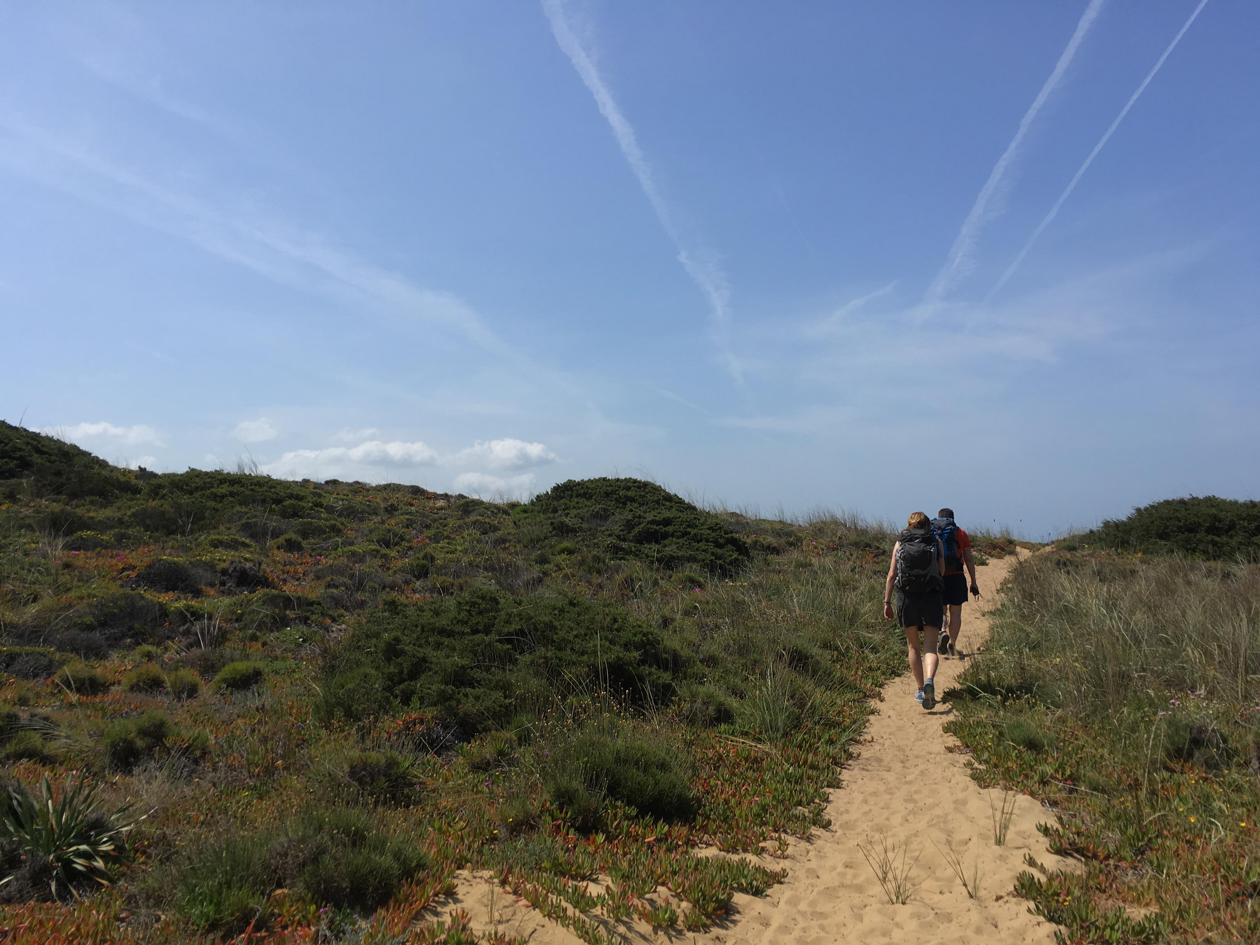 Några vandrare längs en stig